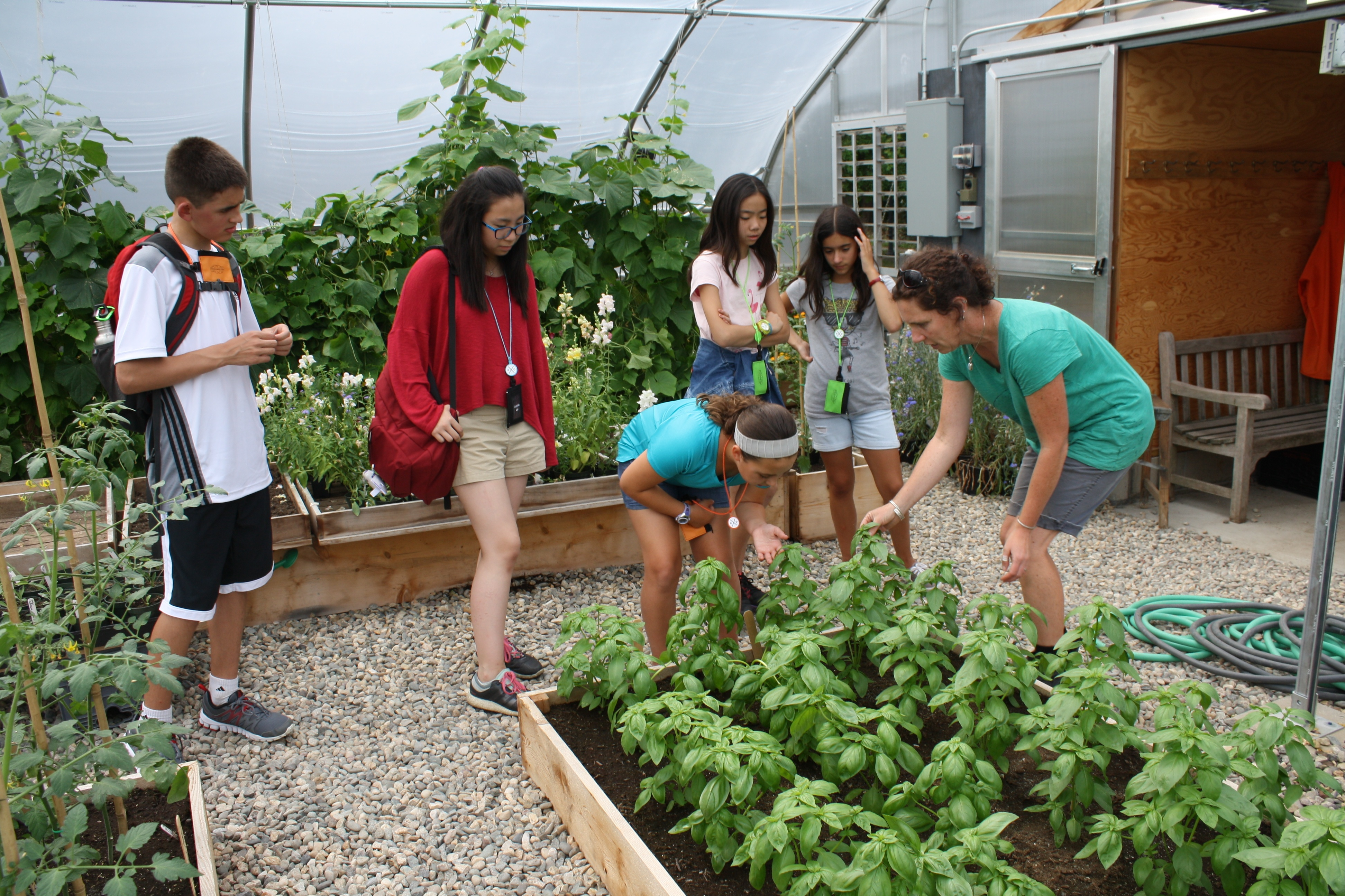 Bella crouches down to observe pepper plants in the Academy Greenhouse.