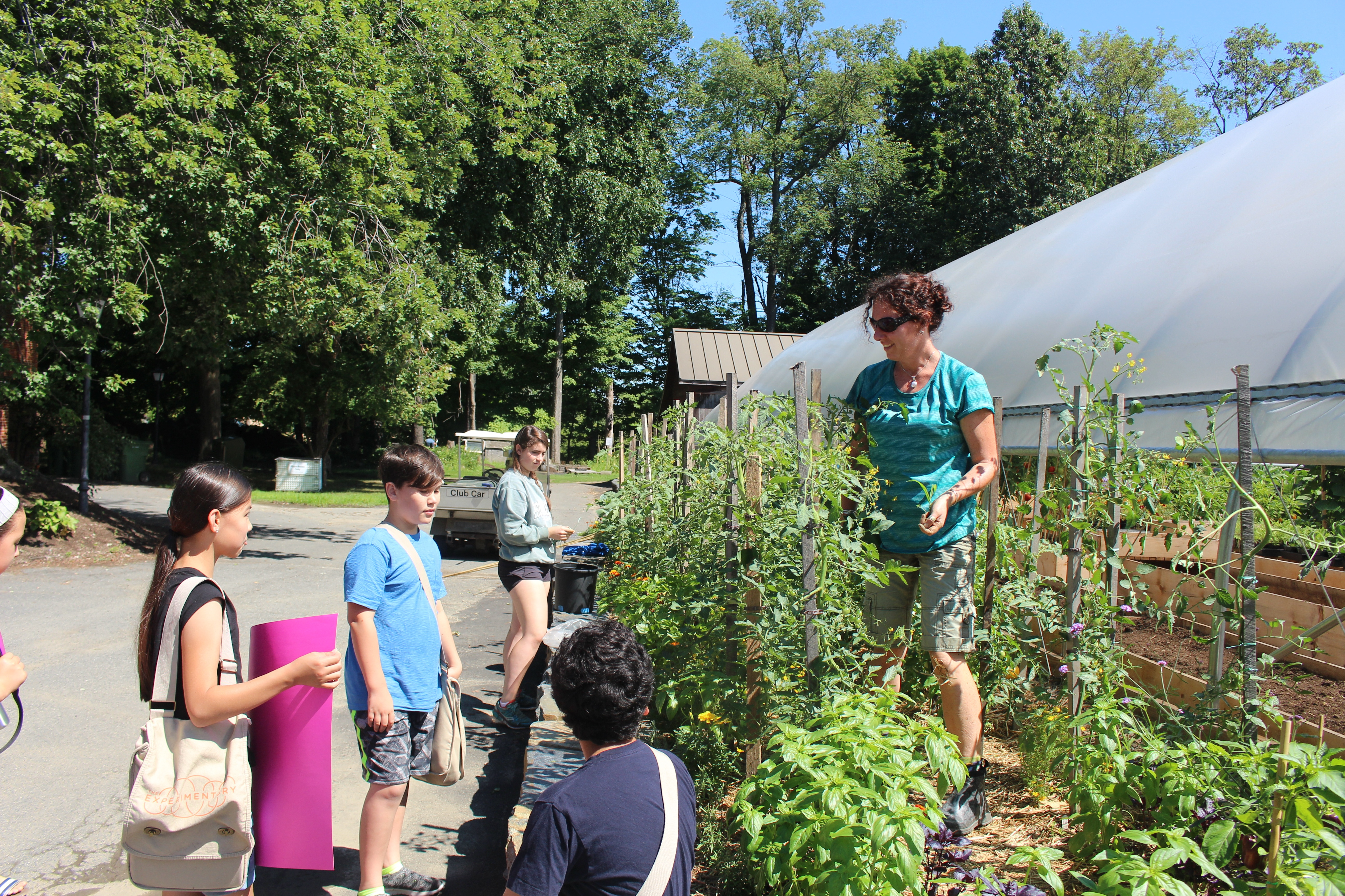 Students stop in to Greenhouse on a beautiful New England summer day.